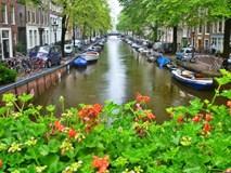 Đến Hà Lan trải nghiệm những điều tuyệt vời!