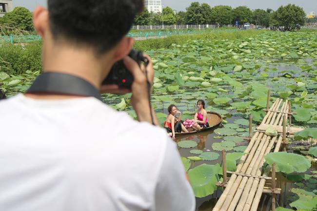 Ảnh: Thiếu nữ đánh đổi làn da trắng, lội hồ sen chụp ảnh dưới nắng-2