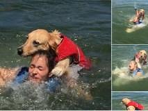 Dắt cún cưng đi bơi, cô gái trẻ suýt bị chính con