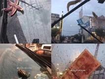 Trung Quốc: Bão lớn khiến hải sản tươi sống trút xuống như mưa trên đường phố