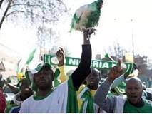 CĐV Nigeria bị cấm mang gà vào sân