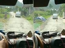 Xúc động chú chó chạy theo xe chở cô dâu về nhà chồng