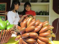 Thực hư về loại chuối đỏ 300.000 đồng/kg