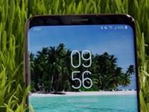 Vụ kiện 7 năm giữa Apple và Samsung đã có kết quả cuối cùng