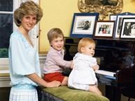 13 bức ảnh đong đầy hạnh phúc cùng cố Công nương Diana mà có lẽ anh em Hoàng tử William và Harry chẳng bao giờ quên