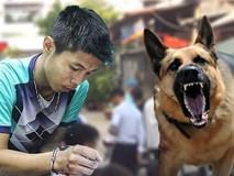 Phản ứng lạ của chú chó dữ lật tẩy hung thủ thảm sát vợ chồng ông chủ và 3 đứa trẻ