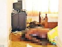 Thái Lan: người đàn ông đột tử trong căn hộ riêng, chú chó cưng phải ăn thịt chủ vì nhịn đói nhiều ngày