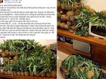 """Chồng mua 100 trái dứa nguyện giúp vợ """"dành cả thanh xuân để giảm cân"""