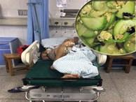 Người đàn ông suýt chết vì ăn bầu đắng: những thực phẩm ẩn chứa độc tố ít người biết