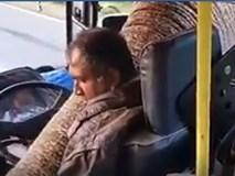 Góc ham ăn: Chú voi chặn xe, thò vòi xin chuối khiến hành khách hốt hoàng