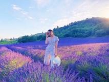 Hương Giang Idol khiến thiên hạ 'phát thèm' khi khoe dáng giữa vườn hoa lavender