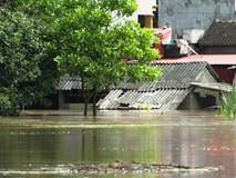 Nước lũ chạm mái nhà, nắng lên vẫn nhất định không rút