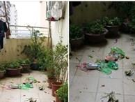 Cô gái phát điên vì đống rác hàng xóm chung cư vứt xuống, dân tình rào rào kể bao chuyện éo le hơn