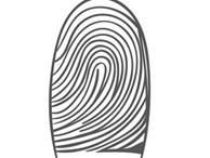 Mỗi người có kiểu vân tay khác nhau và nếu sở hữu vân tay kiểu này thì bạn sinh đã là người có biệt tài hiếm thấy