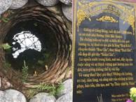 Chuyện chưa từng kể về hai giếng cổ hơn 1.200 năm tuổi