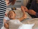 Cụ bà 114 tuổi chia sẻ bí quyết sống thọ nhờ loại củ người Việt có đầy lại rất rẻ-6