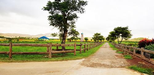 Vinamilk mở rộng đầu tư vào miền Tây Nam Bộ-2