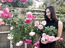Khu vườn ngọt ngào với hoa hồng và cây trái sai trĩu trên đất Mỹ của Hoa hậu Dương Mỹ Linh