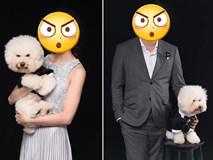 Theo sen đi chụp ảnh cưới, boss trở thành nhân vật chính với gương mặt sưng sỉa trong mọi khung hình