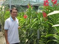 Bỏ lương 20 triệu, liều cầm nhà vay tiền trồng lan, lãi hơn 2 tỷ/năm