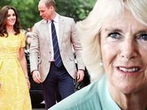 Lần đầu tiên hé lộ nguyên do bà Camilla
