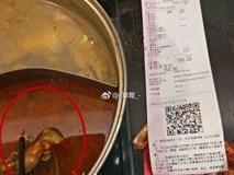 Thai phụ ăn phải nồi lẩu có xác chuột chết, nhà hàng gây phẫn nộ khi đòi cho tiền để phá thai nếu đứa trẻ trong bụng bị ảnh hưởng