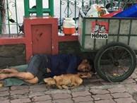 Bức ảnh chó không chê chủ nghèo gây xúc động cho đến khi dân mạng phát hiện ra chi tiết lạ