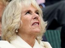 Lần đầu hé lộ những bí mật gây sốc về bà Camilla, người phụ nữ hoàng gia đang bị