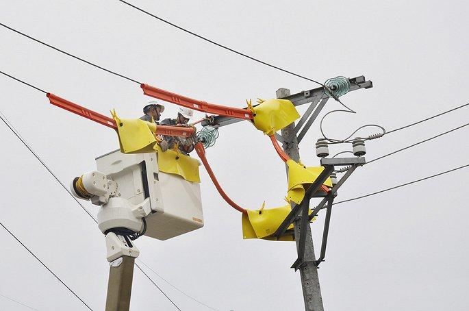 EVN HANOI khuyến cáo sử dụng điện an toàn trong những ngày mưa bão-1