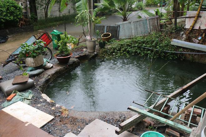 Vì sao khu biệt thự hạng sang bậc nhất Sài Gòn bỏ hoang phí nhiều năm?-4
