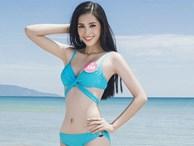 Không xin lỗi, không khóc lóc và điều hy hữu về Hoa hậu Trần Tiểu Vy