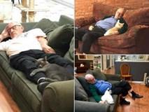 Đăng ảnh tình nguyện viên nằm ngủ say sưa cùng mèo, khu bảo trợ thú cưng nhận 1000 lượt truy cập mỗi phút