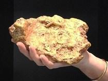 Đào được cục vàng nguyên khối 3kg, bán được 25 tỷ đồng