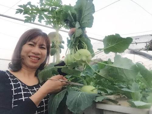 Chỉ 40m² sân thượng, mẹ Hà Nội gây bất ngờ với vườn ngập rau trái, gà, trứng ăn quanh năm-1