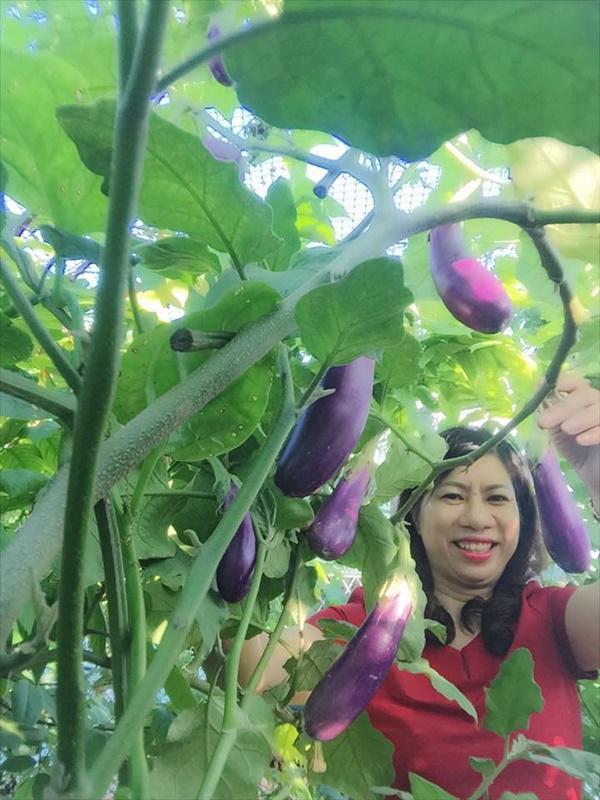 Chỉ 40m² sân thượng, mẹ Hà Nội gây bất ngờ với vườn ngập rau trái, gà, trứng ăn quanh năm-10