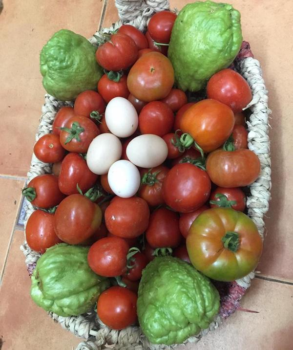 Chỉ 40m² sân thượng, mẹ Hà Nội gây bất ngờ với vườn ngập rau trái, gà, trứng ăn quanh năm-12