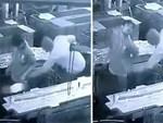 Nước Nhật bình yên tới mức cảnh sát sẵn sàng đi điều tra vụ mất trộm 1 quả nho-3