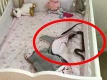 Đặt con gái 4 tháng tuổi nằm ngủ trong cũi, 1 tiếng sau bà mẹ giật mình phát hiện cảnh tượng