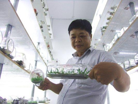 Hai Lúa cả gan bỏ hơn 10 tỷ đấu lại độc quyền của người Thái Lan-2