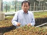 Chấn động: Đại gia Đà Nẵng bỏ 6,8 tỷ mua gốc lan đột biến 5 cánh-8