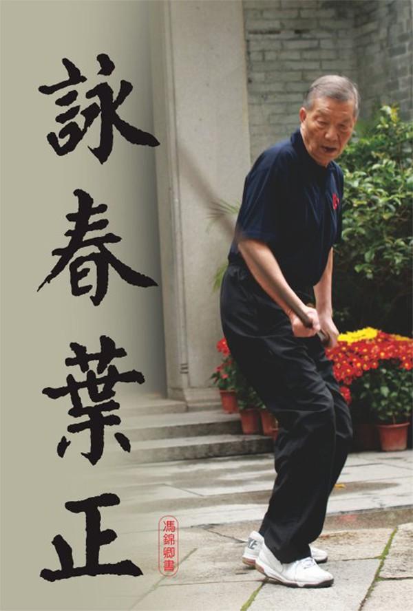 Con trai Diệp Vấn đứng im như tượng vẫn làm cao thủ Thiếu Lâm Tung Sơn khiếp đảm-3
