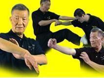 Con trai Diệp Vấn đứng im như tượng vẫn làm cao thủ Thiếu Lâm Tung Sơn khiếp đảm