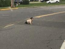 Hoảng hồn với hình ảnh bé trai bò ngang qua đường quốc lộ, xung quanh không hề có cha mẹ hay người thân nào