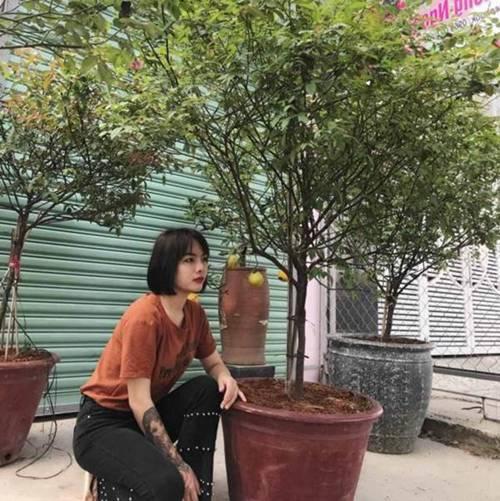 Vườn hồng vài nghìn gốc siêu quý 3000m2 của hot girl 8x Thái Nguyên-1