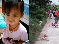 Đang chơi bên ngoài nhà, bé gái 4 tuổi bị 3 con chó nhà hàng xóm cắn tử vong
