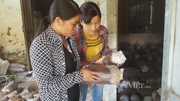 Từ phận làm thuê, gái đảm xứ Lạng thành bà chủ trại nấm khủng-4
