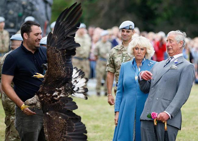 Hoàng gia Anh nghiêm túc cỡ nào cũng không thể thiếu những khoảnh khắc hài hước và hớ hênh bất đắc dĩ của các thành viên-8