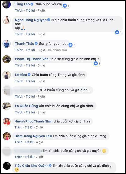 Đoan Trang khiến cả phi hành đoàn phải chờ đợi trong chuyến bay về Thụy Điển dự lễ tang bố chồng-2