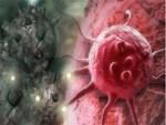 Giáo sư hàng đầu Việt Nam bày cách ăn lành phòng ung thư tốt hơn cả kiềm hóa cơ thể-3