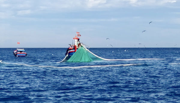 """Những thợ săn"""" tiền ở vùng biển: Thu về hàng trăm triệu trong 1-2h-1"""